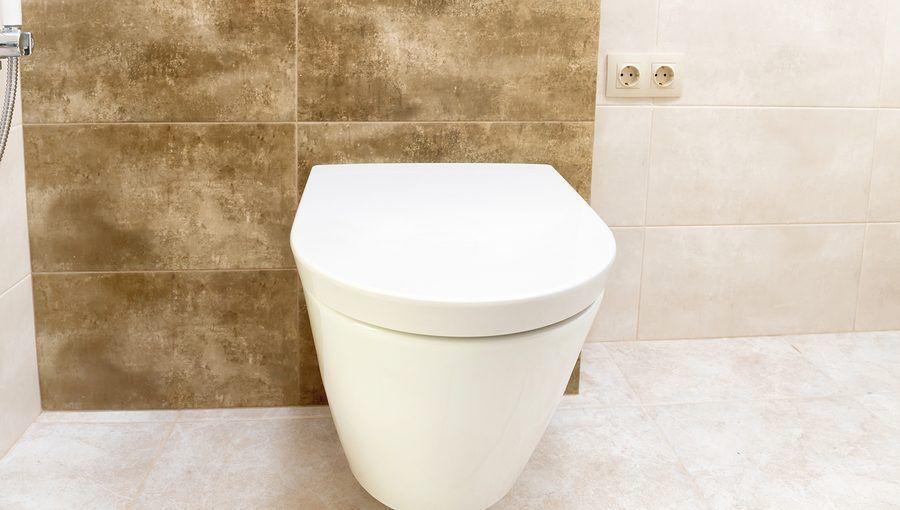 Beste Spülrandloses WC Test